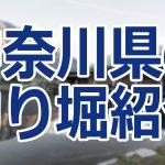 神奈川県の釣り堀23選!手ぶらで行ける場所から海の釣り堀まで紹介!